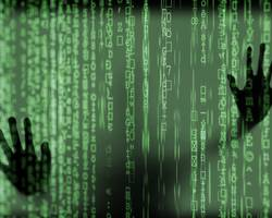 Menu: Im Netz des Netzes