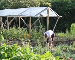 Menu: GartenNachbarschaftsLeben