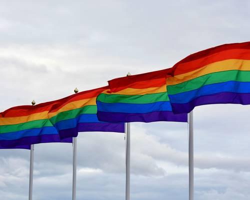 Queer für Anfänger © Daniel Junker