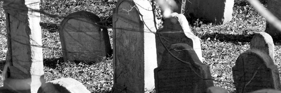 Jüdischer Friedhof [(c): Daniel Junker]