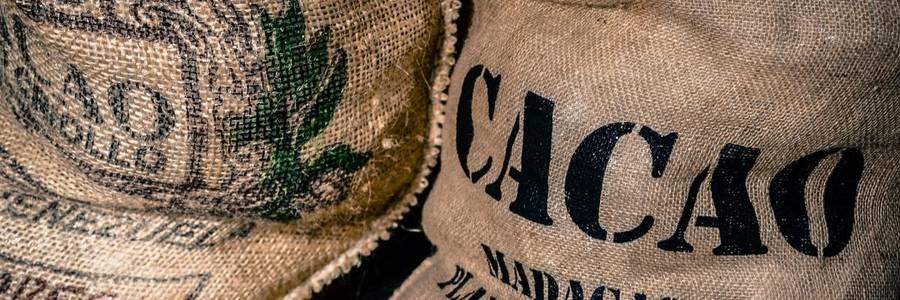Jutesäcke mit fair gehandeltem Kakao [(c): Daniel Junker]