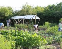 Menu: Der Garten wird bunt