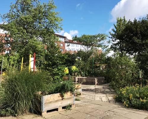 Der interkulturelle Garten macht Schule für alle © Daniel Junker