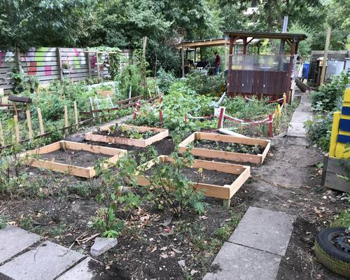 Der interkulturelle Garten als Beispiel für lokales Handeln © Daniel Junker