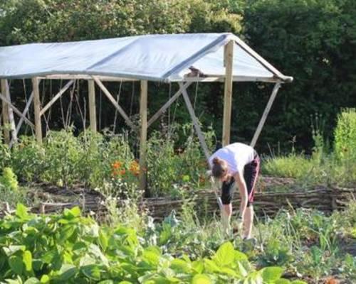 GartenNachbarschaftsLeben